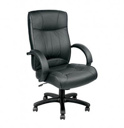 Excellent Eurotech Odyssey Leather High Back Executive Office Chair Machost Co Dining Chair Design Ideas Machostcouk